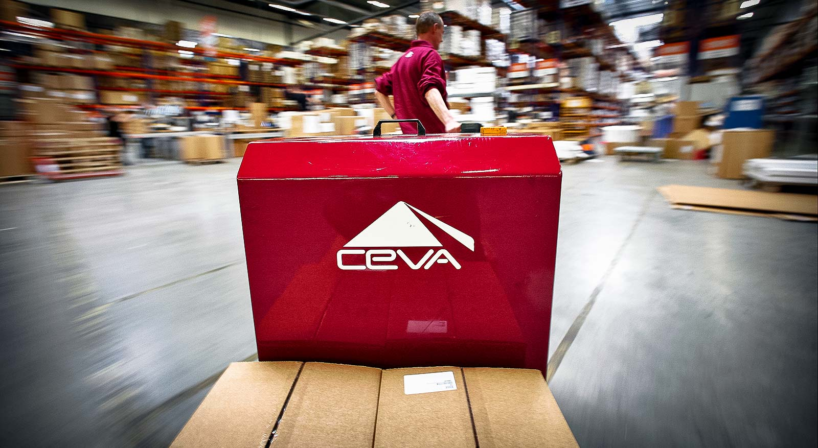 Transforming CEVA's Outsourcing Model